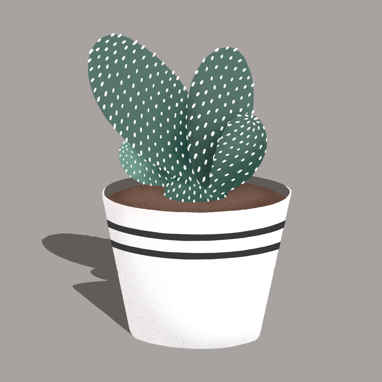 Illo_Cactus_v1